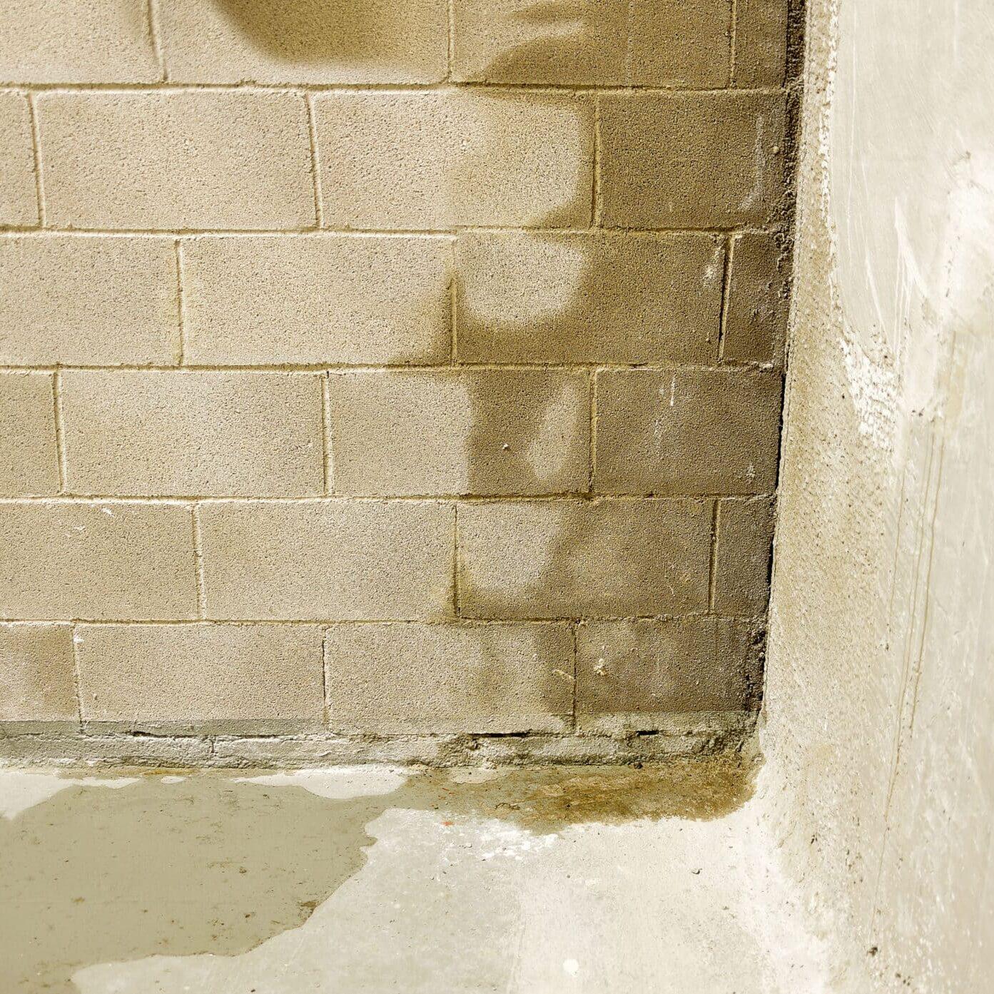moisture-on-wall-basement-waterproofing